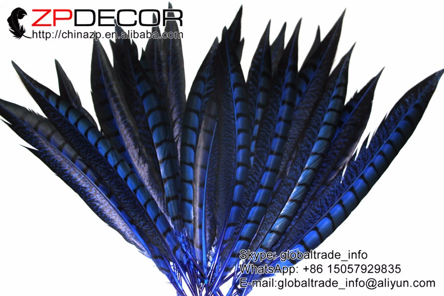 """10 Pieces 25-30/"""" Natural Zebra Lady Amherst Pheasant Tail Super Long Feathers"""
