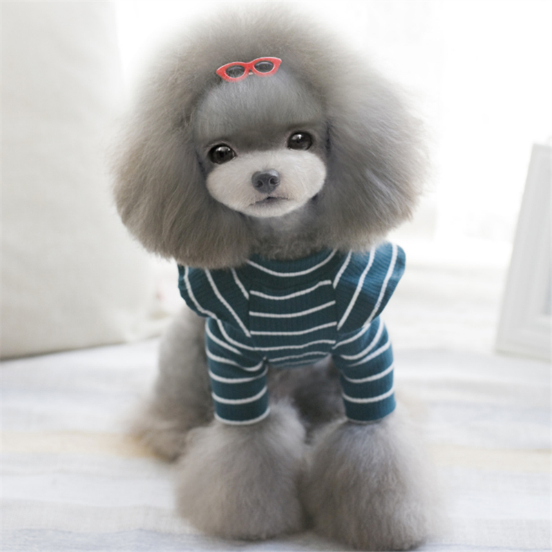 girl dog clothes (2)
