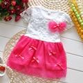 Bebé vestido de la muchacha vestidos flores preciosas del bordado de encaje vestido de verano vestido de ropa de niños para chicas fiesta de cumpleaños del vestido del tutú del bebé