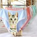Cat Underwear Women Panties Plus Size Cotton Cat Briefs Breathable 3D Printing Pussy Panties ntimates Girls Meow Cat Lingerie