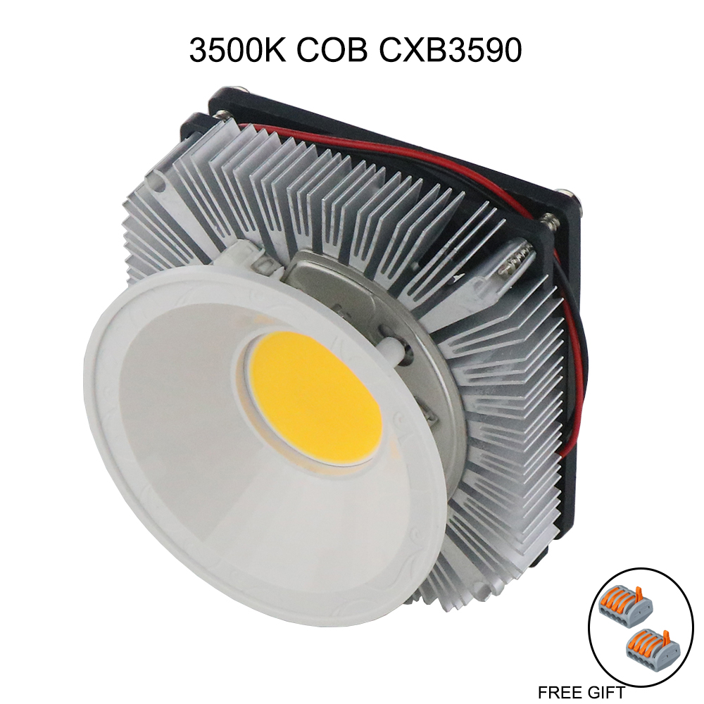 Aliexpress Com Buy Led Full Spectrum 100w Cree Cxb3590