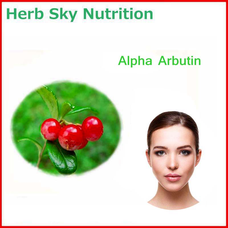 100% Natural&Pure Alpha Arbutin Powder with Free Shipping, Skin care best quality gmp factory produce natural goji berry powder wolfberry powder free shipping