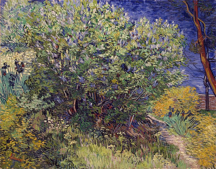 Vincent Van Gogh Hand Painted Oil painting on canvas wall Art Home Living Room decor Lilac Bush