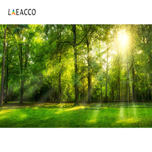 Laeacco Green Grass Tree Morning Sunshine Forest Park Natural Scenic Photo Backgrounds Photographic Backdrops For Studio