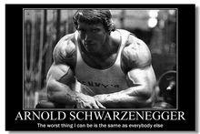 Arnold Schwarzenegger Motivational Quotes Art Silk Poster Bodybuilding Fitness Inspirational Pictures Wall Decor