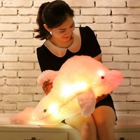 Colorful LED Plush Toys With Music And Sound Light Emitting Pillow High Quality Dolphin