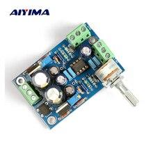 Предусилитель Aiyima Dual OP Amp NE5532, плата, полностью соединенный предусилитель для LM3886/TDA7293/LM4766/LM1875, «сделай сам»