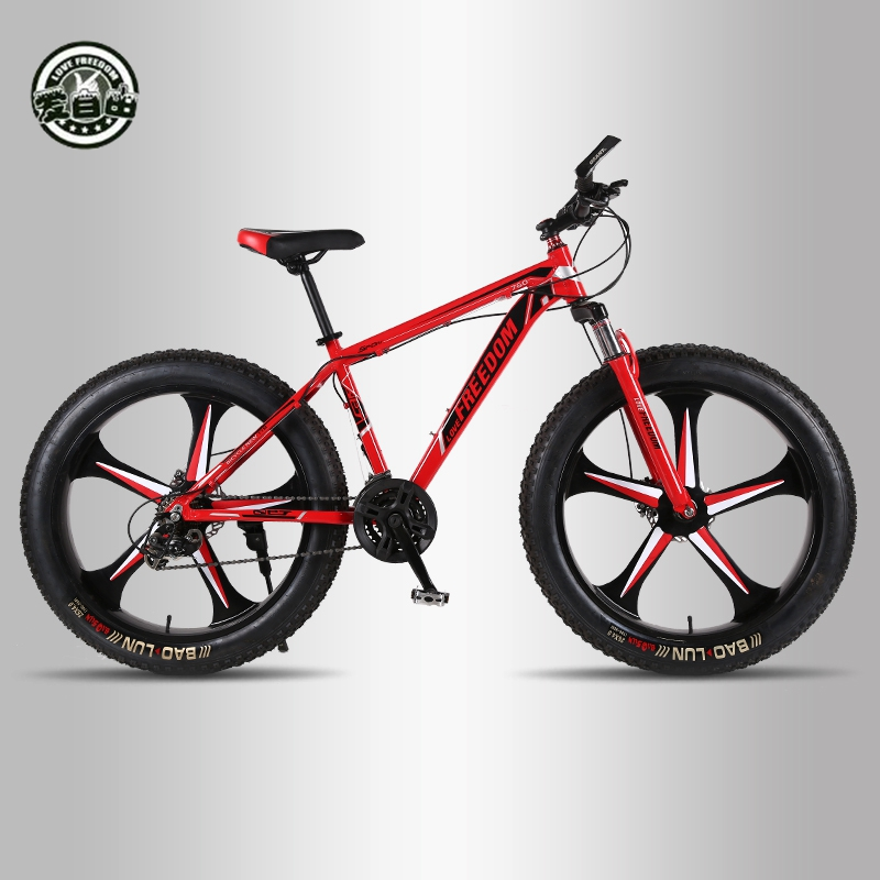 Kubeen New Arrival 7212427 Speeds Disc Brakes Fat Bike 26 Inch