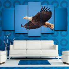 Download 990 Koleksi Background Elang Biru HD Terbaik
