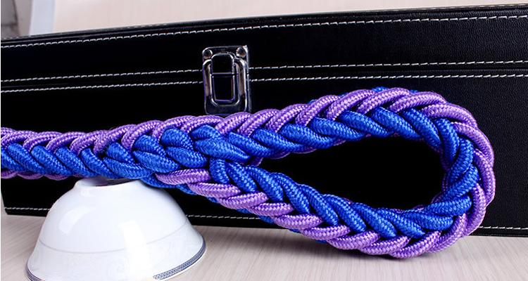 laisse chien corde