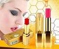 Brand New Cosmetic Nude colores lápiz labial de larga duración maquillaje de la alta calidad de cera de abeja labios bálsamo labial impermeable cosmética Lip gloss