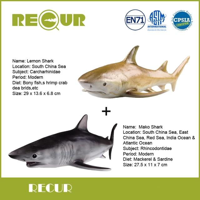 Lemon Shark Toys : Aliexpress buy pcs lot recur lemon shark mako
