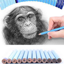 CHENYU 24Pcs Professional Hard Medium Soft Sketch Charcoal Pencils Drawing Pencils Set For School Standard Pencil Art Supplies professional 12pcs white sketch charcoal pencils standard pencil drawing pencils set for school tool painting art supplies