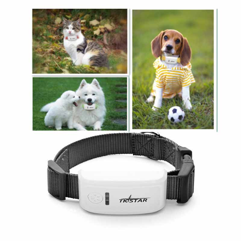 Super Mini Tk Long Standby Time Dog Cat Pet Personal Gps Tracker Ios Andriod App Free Website Service Free Shipping