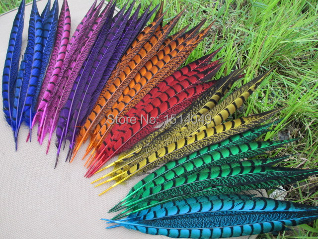 Free shipping wholesale 200pcs high quality natural cover chicken wing 30 35cm/12 14inch Variety of decorative  8 colors diy-in Feather from Home & Garden    1