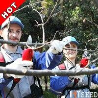Venta Herramienta eléctrica de jardín de 30MM de diámetro de corte cizalla de poda eléctrica de árbol