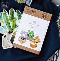 30 Pcs Pack Fresh Succulent Luminous Greeting Card Postcard Birthday Letter Envelope Gift Card Set Message