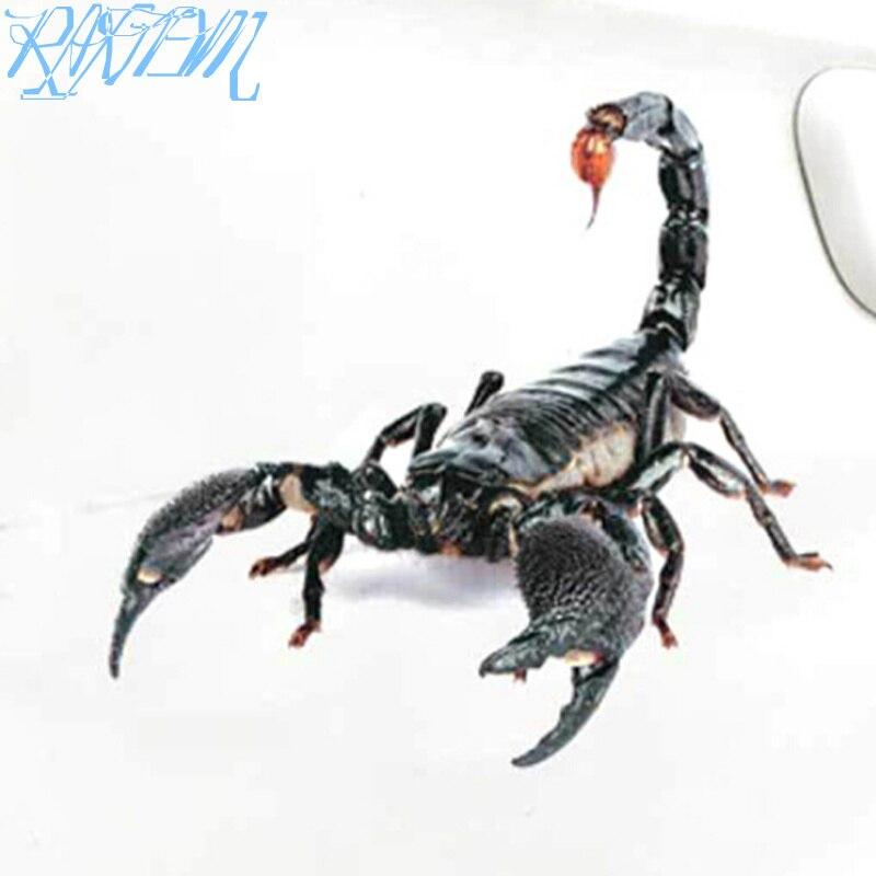 3D Car Sticker Animals Bumper Spider Gecko Scorpions For Ssangyong Tivoli XLV Kyron Actyon Korando Rexton Rodius(China)