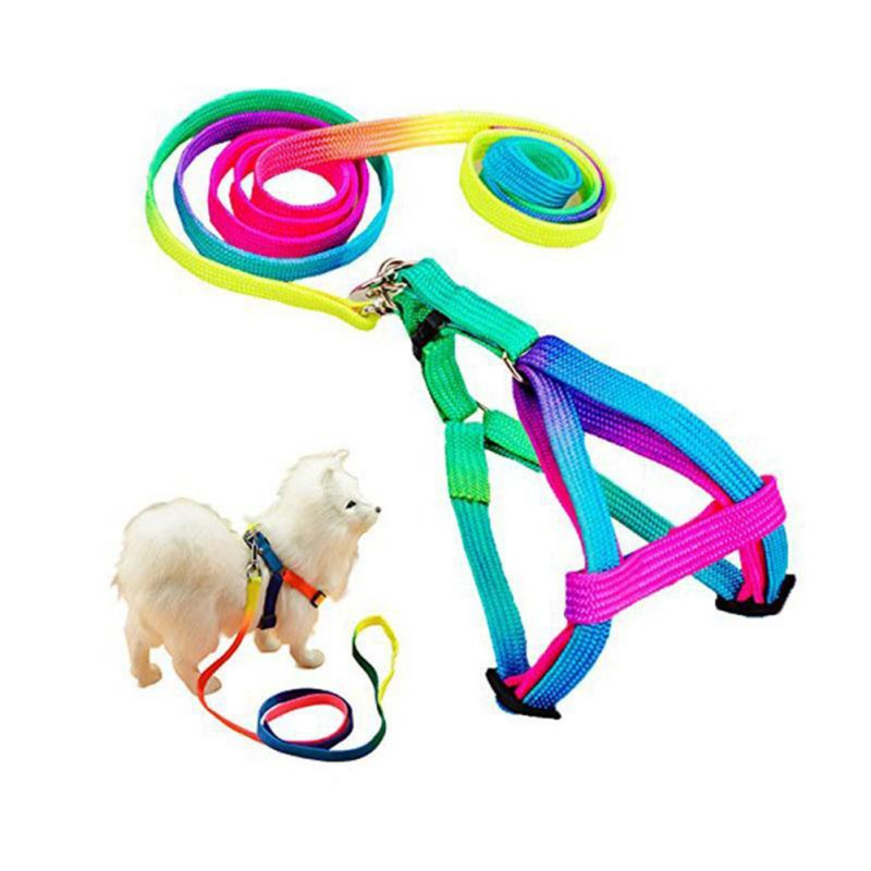 1PC Colorful Rainbow Pet Dog Collar Harness Leash Soft Walking Harness Lead Colorful and Durable Traction Rope Nylon in Leashes from Home Garden