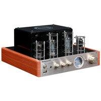 100W NPS MS 10D MKII Hifi Vaccum Tube Amplifier USB/Bluetooth Home Audio Amplifier 25W+25W 220v/50HZ amplificador bluetooth amp