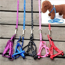 color send randomly 1 x brand new nylon pet cat doggie puppy leashes lead harness belt rope hot