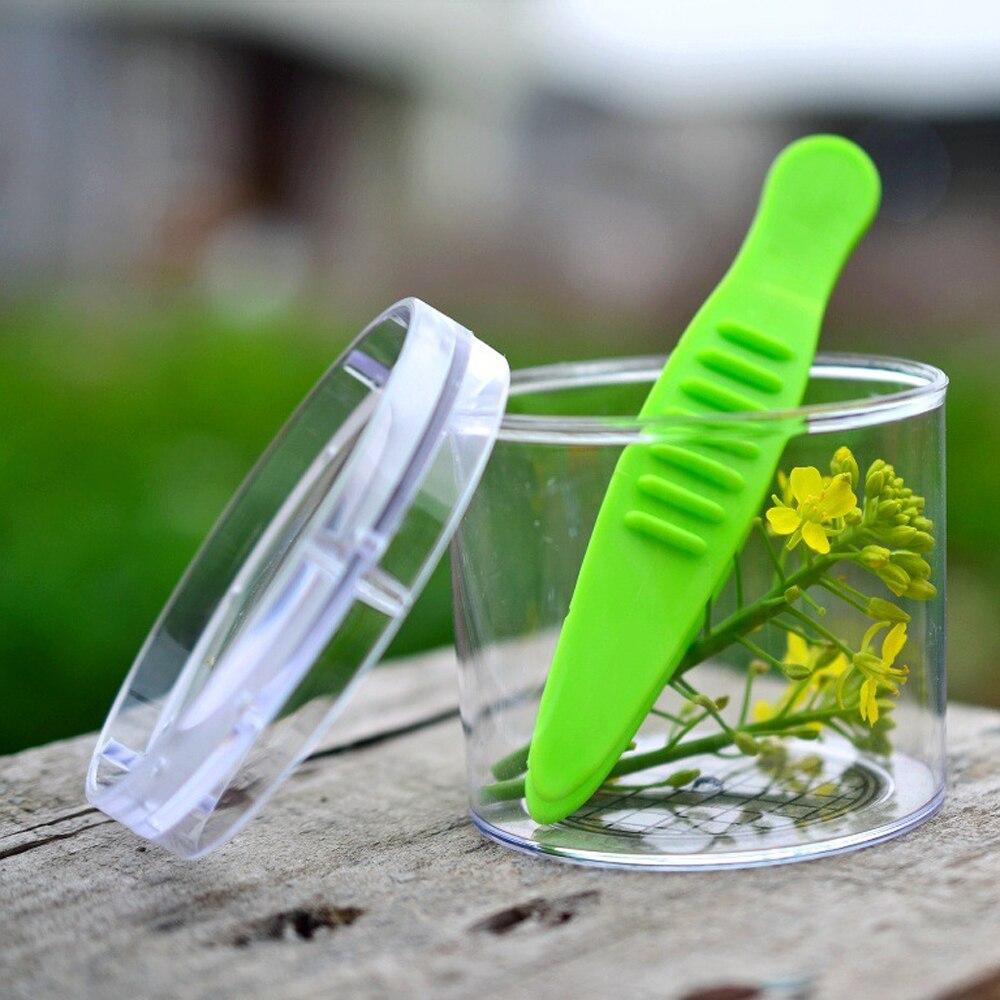 Kids School Plant Insect Biology Study Tool Set Plastic Scissor Clamp Tweezers Cute Nature Exploration Toys Kit For Children