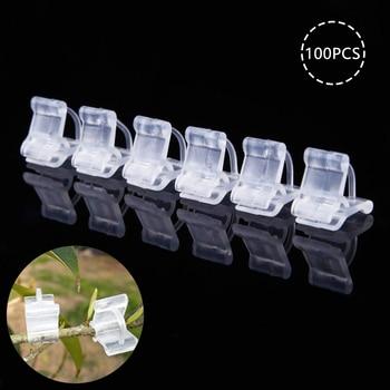 Conjunto de Mini pinzas de plástico transparente para injerto, accesorios de jardinería, pinzas para Injerto de flores, 100 unidades