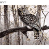 Owl In Forest High Quality Oil Painting By Numbers DIY Pictures Acrylic Paint Painting On Canvas
