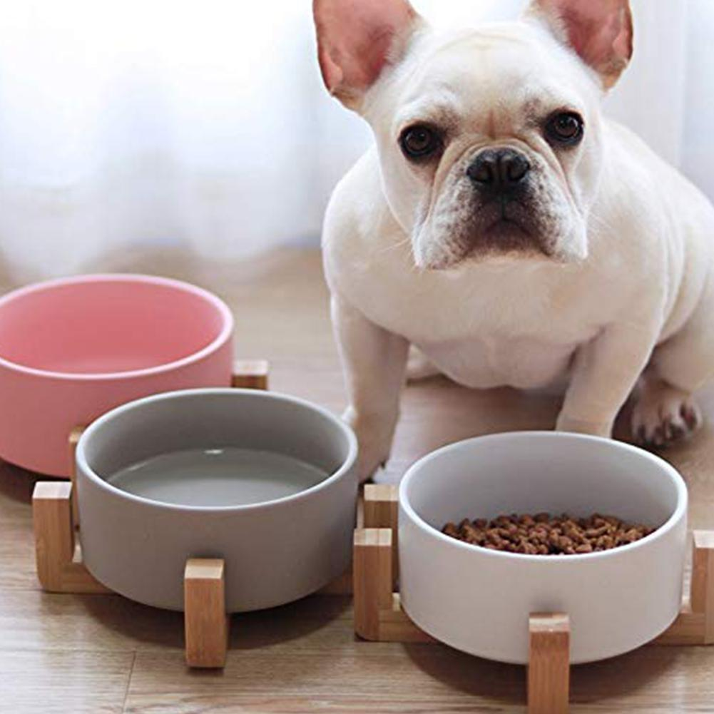 Dog Cat Bowls Travel Feeding Feeder Water Bowl For Pet Dog Cats Puppy Outdoor Food Dish Ceramic Bowl