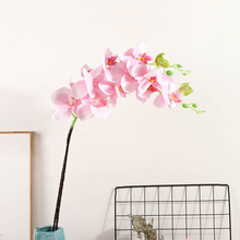 Klonca New Natural Silk Flower 50cm 1pc Artificial Flower Fake Flower Phalaenopsis for Home Decoration Wedding Flower Wall