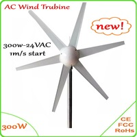 300W DC Wind Turbine Generator only 1m/s small wind speed start 12V 24V windmill CE GL Approved 300W wind generator