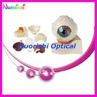 E4601 100 Good Quality Guarantee Eyeball Model Lowest Shipping Costs
