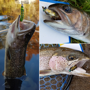 Image 5 - واقعية يطير حشرات صيد مجموعة 16 قطعة فراشة يرقات خنفساء الذباب الجاف الحشرات إغراء ل PikeTrout إغراء عدة flyfishing