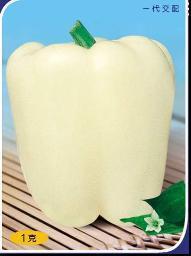 Хай Хуа Перец семена 100 семена органический овощной