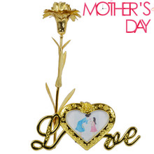 Dried Flowers 24k Gold Foil Carnation Mothers Day Send Mom Gift Birthday Factory direct sales