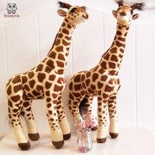 BOLAFYNIA Laste pluss täidisega mänguasjad jõulude sünnipäevaks Kinkekleebis uus stiilis kaelkirjak Baby Kid plush Toy
