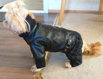 Faux Leather Luxury Coat 4