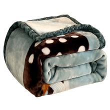 Cartoon Printed Soft Warm Thick Raschel Mink Blankets For Beds Double Layer Single Bed Winter Fuzzy Chunky