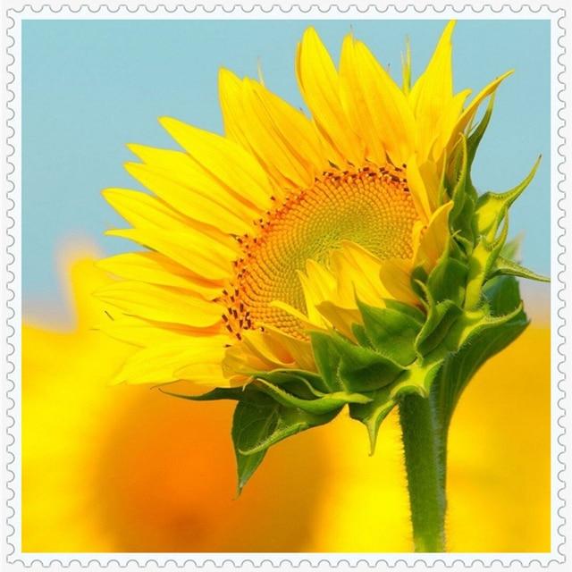 5D Diy Diamond Painting Cross Stitch Warm Sunflower Home Decor Full Rhinestones Mosaic Inlay Embroidery Floral YF017