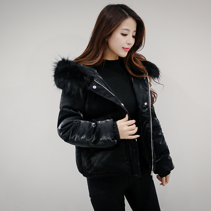 Down Puffer Coat Han Coats