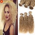 Top 8A Malaysian Kinky Curly Virgin Hair 300g Blonde Curly Human Hair Extension Cheap Blonde Virgin Afro Kinky Curly Human Weave