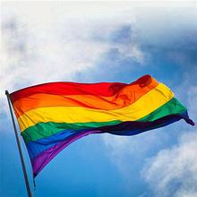 Gay Friendly Rainbow Flag Banners Pro Lesbian Pride LGBT Polyester For Right Parade 90x150cm 3x5FT