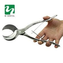 Grands ciseaux de plâtre de laboratoire dentaire de 20cm de long, matériel de dentisterie, ciseaux de plâtre pour équipement de laboratoire dentaire, livraison gratuite