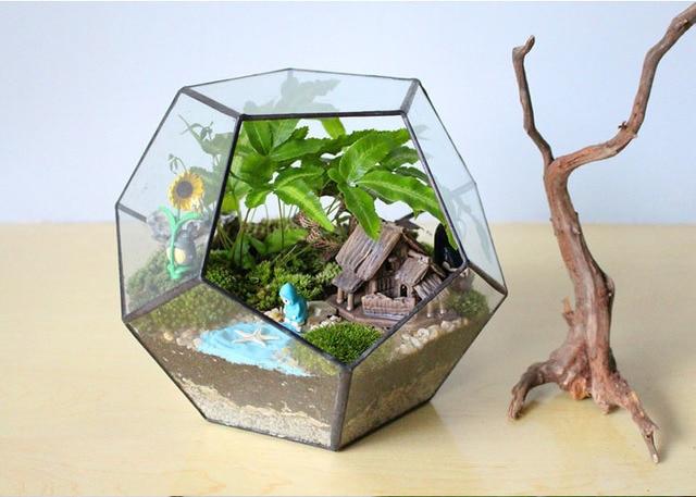 Terrarios Dodecahedron Para Suculentas Flores Y Plantas Terrario - Terrario-para-plantas