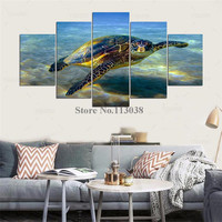Hot Selling 5 Pieces Turtles Animal Sea Printed Canvas Painting Living Room Wall Art Pictures Home