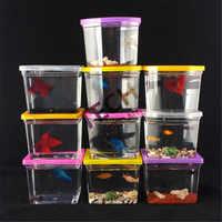 10*7.5*8.5 CM 10 STKS Kleurrijke Betta Huis Rechthoek Vechten Betta Aquarium Aquarium (Vis Niet inbegrepen) Peceras Para Bettas Tank