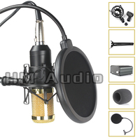 High Quality Professional Condenser Sound Recording Microphone With Shock Mount For Radio Braodcasting Singing With 48V