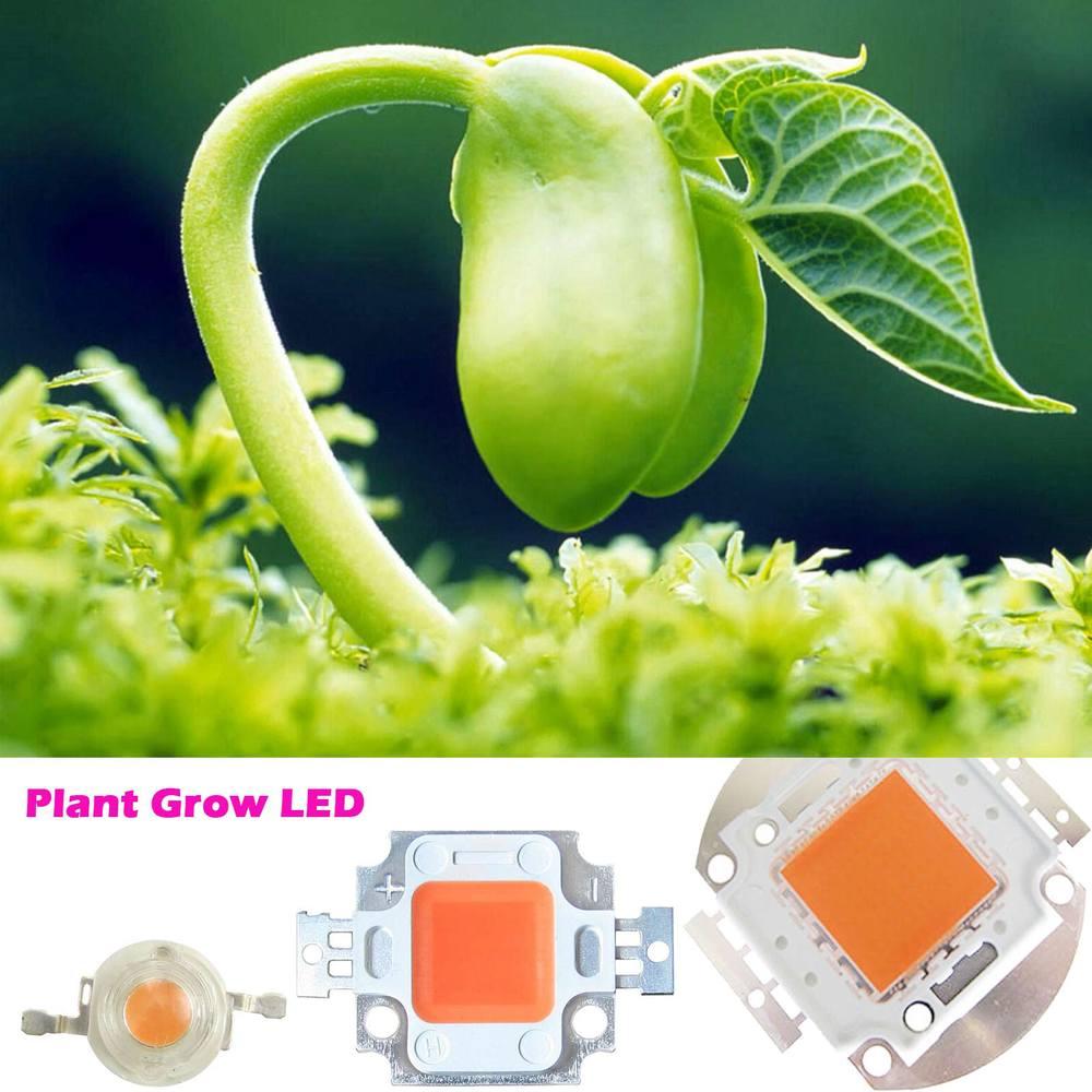 Yüksek Güç 45mil 3 W 10 W 20 W 30 W 50 W 100 W Tam Spektrum Led Çip 385 ~ 840nm BridgeLux Bitki Büyümek Için
