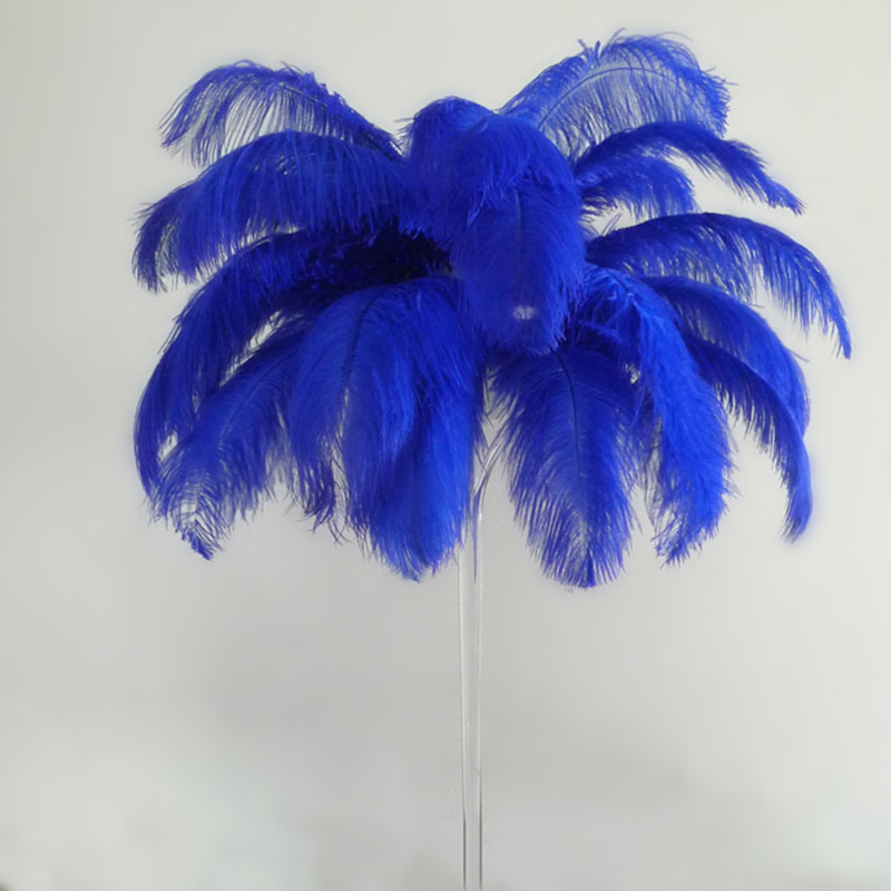 Samba 100 teile / los Verkauf Farbige Straußenfeder 65 cm-70 cm, - Kunst, Handwerk und Nähen - Foto 2