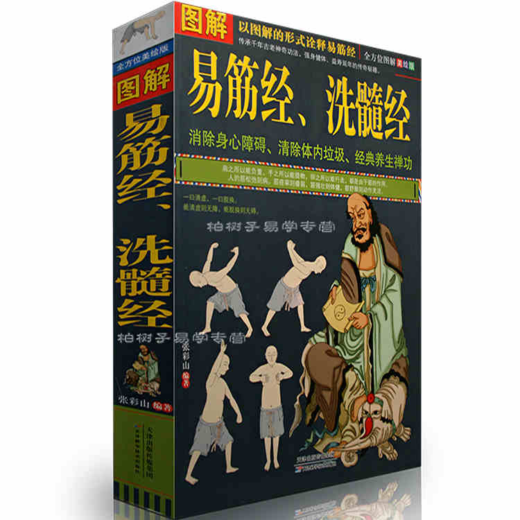 Graphic Bodhidharma Yi Jin Jing Regimen Shaolin kung fu book martial Eliminate physically and mentally handicapped classic Book jing yi
